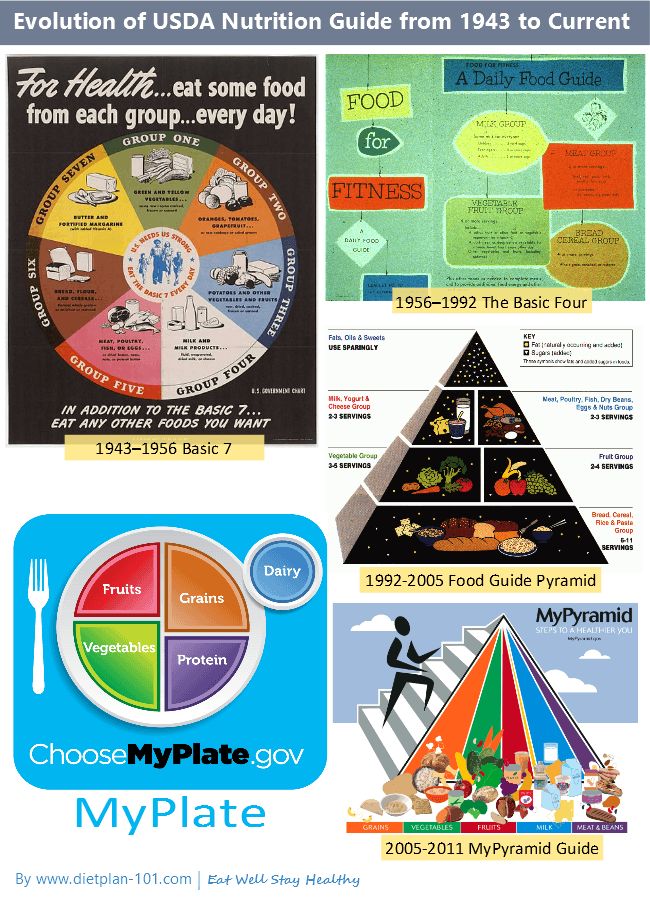 The Shortcomings Of Usda Myplate Diet Plan 101