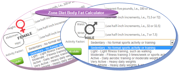 zone-diet-body-fat-calculator