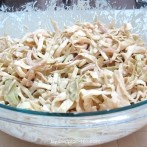 Coleslaw with Tarragon Balsamic Mayonnaise (Atkins Diet Phase 1 Recipe)