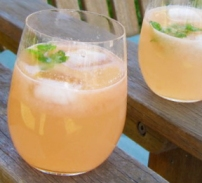 Grapefruit Ginger Spritzer Recipe