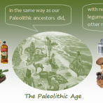 The Paleo Diet: Eating Modern Daily Foods in the Paleolithic Lifestyle