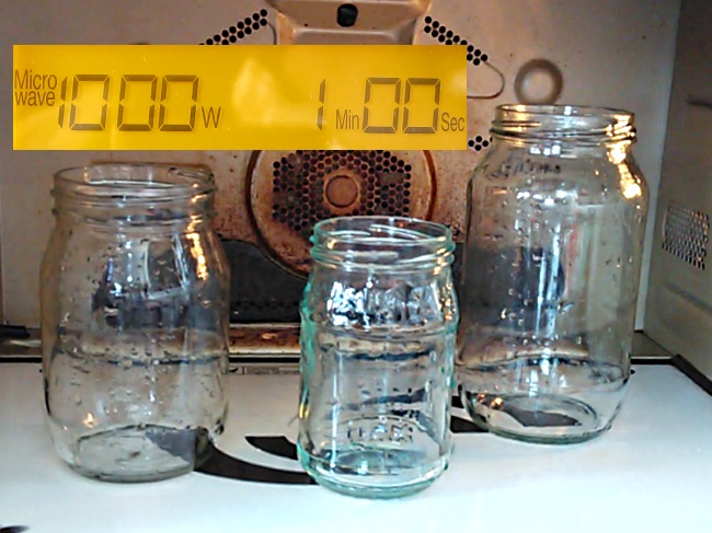 How To Sterilize Canning Jars In Microwave Diet Plan 101